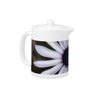 WHITE CAPE DAISY FLOWER Teapot
