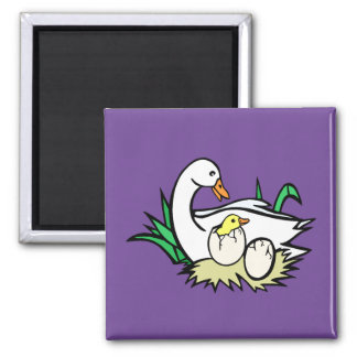 White cartoon duck with baby ducks in eggs 2 square magnet