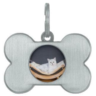 White cat lying lazy in hammock pet ID tag