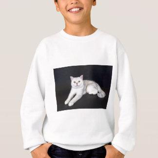 White cat lying on isolated black background sweatshirt