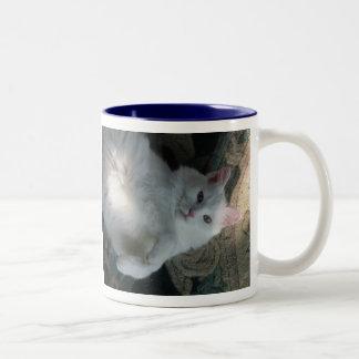 White cat mug, Kitty Surprise Two-Tone Coffee Mug