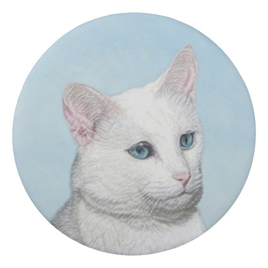 White Cat Painting - Cute Original Cat Art Eraser