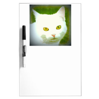 white cat staring dry erase board