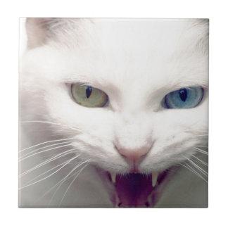 White cat tile