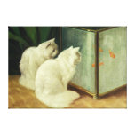 White Cats Watching Goldfish Stretched Canvas Prints