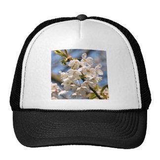 White Cherry bare OM Trucker Hat