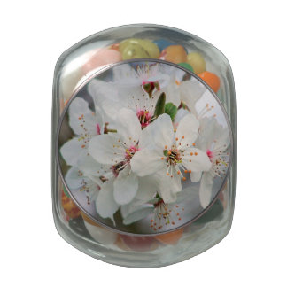 White Cherry Blooms Design