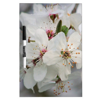 White Cherry Blooms Dry-Erase Whiteboards