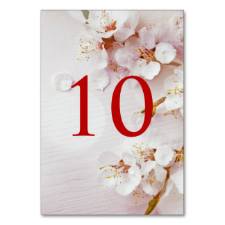 White Cherry Blossom Elegant Table Numbers