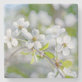 White Cherry Flower Stone Beverage Coaster