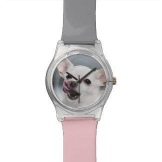 White Chihuahua licking lips Wristwatch
