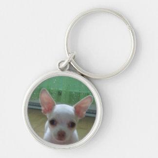 White Chihuahua Pup Keychain