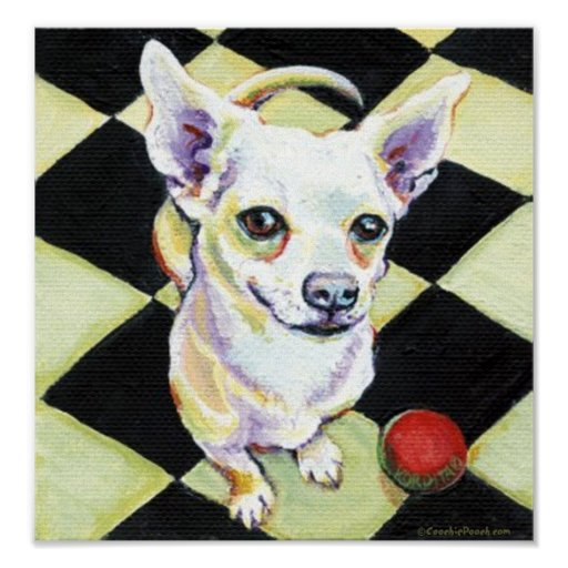 White Chihuahua with Red Ball Poster
