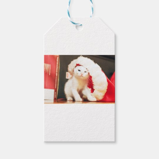 White Christmas Cat Gift Tags