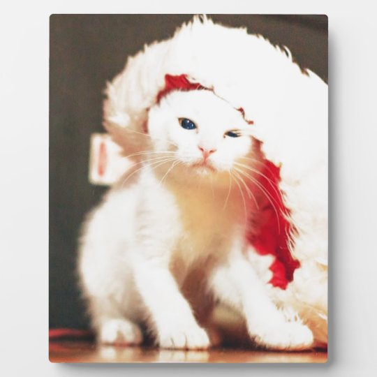 White Christmas Cat Plaque