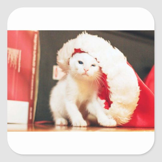 White Christmas Cat Square Sticker