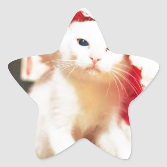 White Christmas Cat Star Sticker