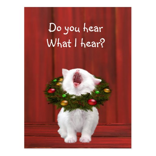 White Christmas kitten Post Cards