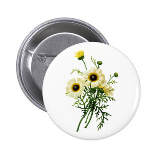 White Chrysanthemum by Pierre Joseph Redoute 2 Inch Round Button