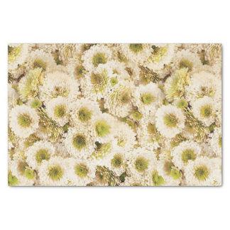 White Chrysanthemums Tissue Paper