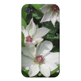 White Clematis Cases For iPhone 4