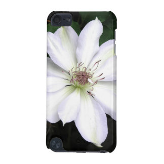 White Clematis Flower iPod Touch 5G Case