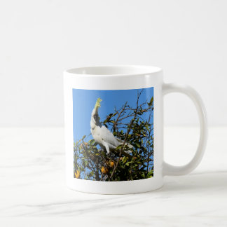 WHITE COCATOO RURAL QUEENSLAND AUSTRALIA COFFEE MUG