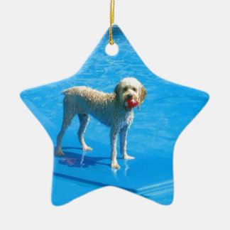 White Cockapoo Dog Swimming on a Raft Ceramic Star Ornament