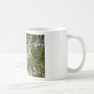 WHITE COCKATOO QUEENSLAND AUSTRALIA COFFEE MUG