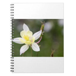 White Colorado Columbine Spiral Notebook