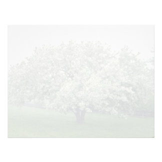 white Crab apple tree, Quebec, Canada flowers Letterhead
