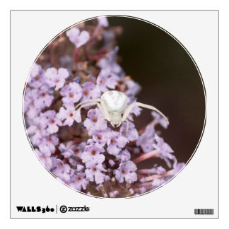White Crab Spider Wall Decal