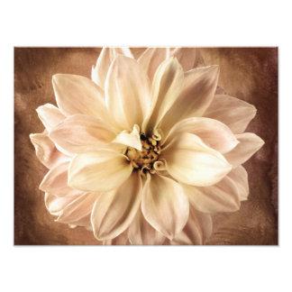 White, Cream, Brown Dahlia Background Customized Photo Print