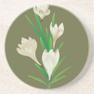 White Crocus Flowers 2 Coaster