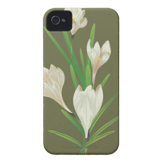 White Crocus Flowers 2 iPhone 4 Cases