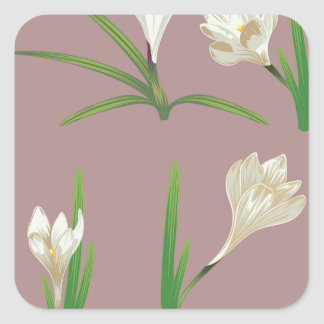 White Crocus Flowers Square Sticker