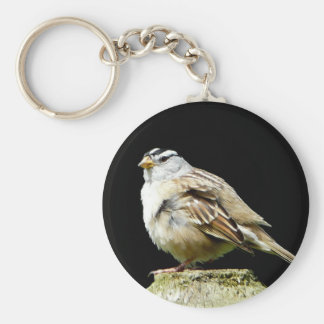 White Crowned Song Sparrow Basic Round Button Keychain