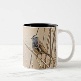 White-crowned Sparrow Two-Tone Coffee Mug