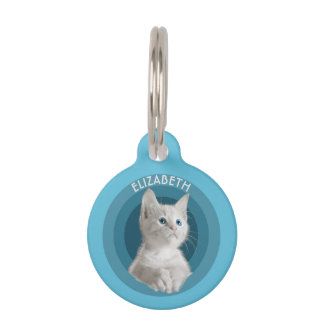 White Cute Blue Eyed Kitten In Turquoise Circles Pet Name Tags