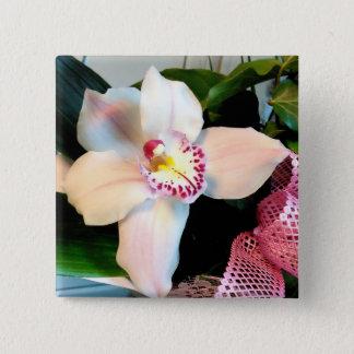White Cymbidium Orchid 2 Inch Square Button