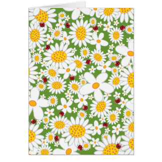 White Daisies and Ladybugs Invitation / Gift Card