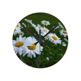 white daisies clocks
