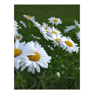 white daisies customized letterhead