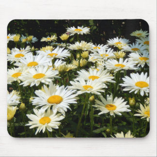 White Daisies Mouse Pad