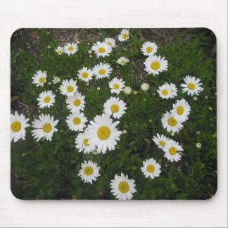 White Daisies Mousepad