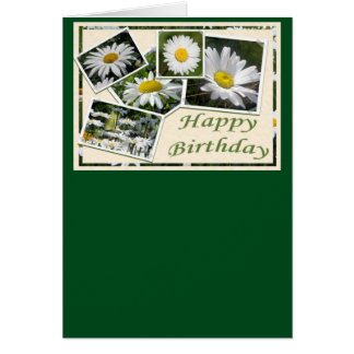 White Daisy Birthday Collage Card