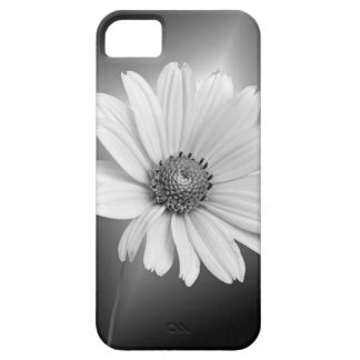 White Daisy Case For The iPhone 5