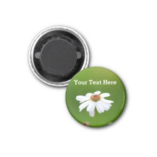 White Daisy Flower Against green background Magnet