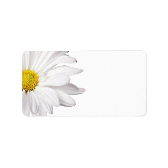 White Daisy Flower Background Customized Daisies