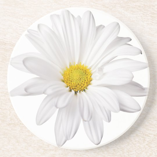 White Daisy Flower Background Customized Daisies Coaster